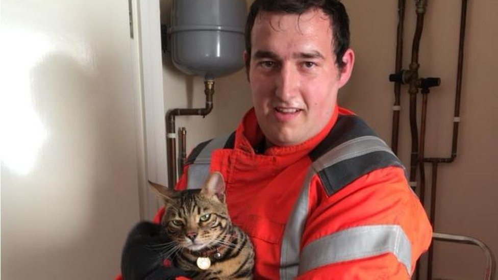 Upside-down cat rescued after getting wedged behind boiler
