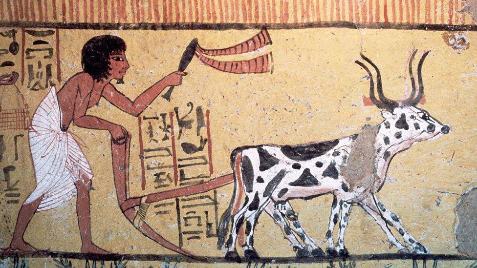 Fresco egipcio mostrando una actividad agrícola.