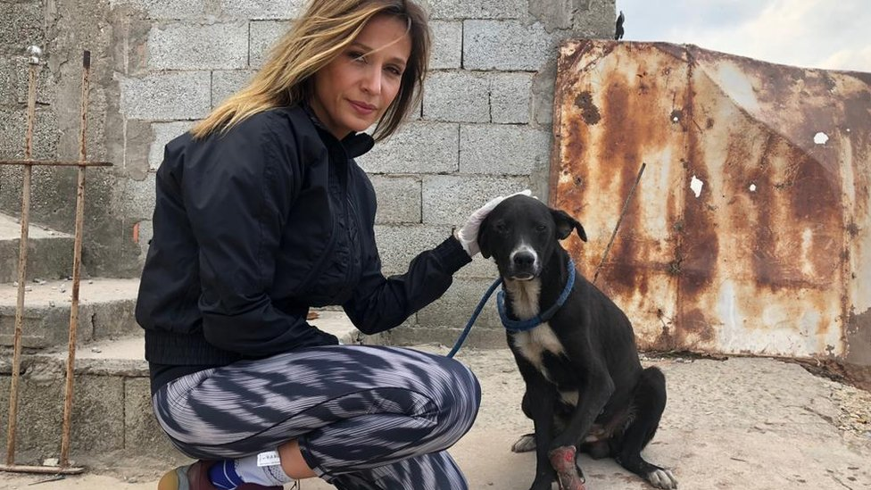 Luis Mell pictured with a dog in her shelter