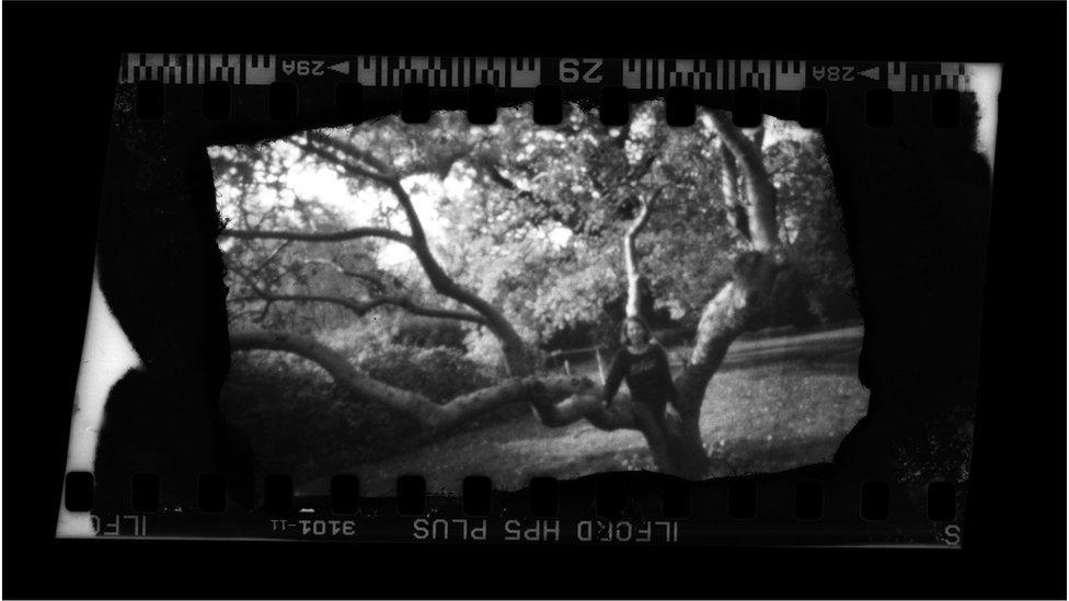 Woman in an apple tree
