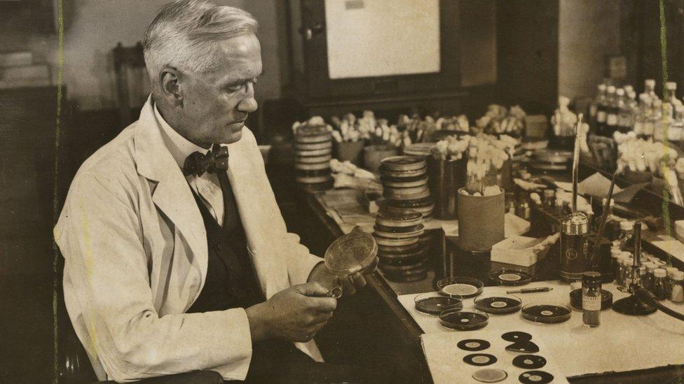 Alexander Fleming en su laboratorio.