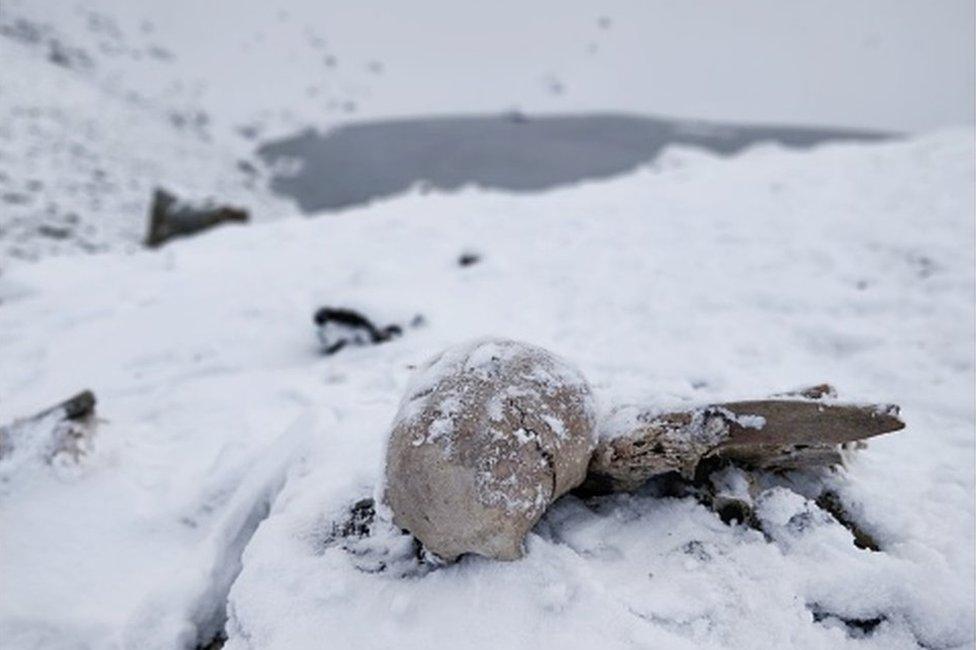 Restos en el lago de los esqueletos.
