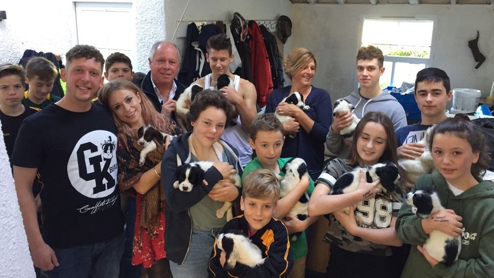 Devon villagers rally behind litter of 14 orphaned puppies