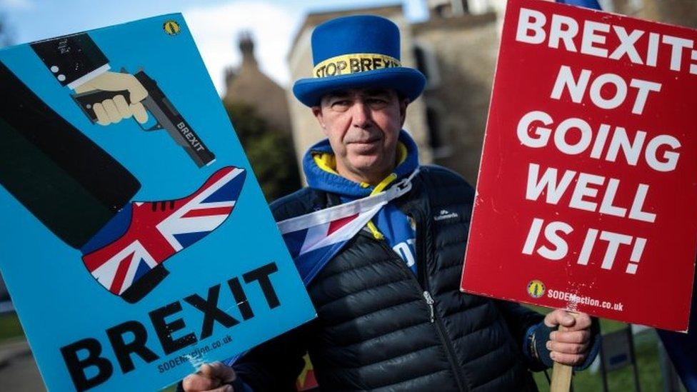 反對脫歐的抗議者