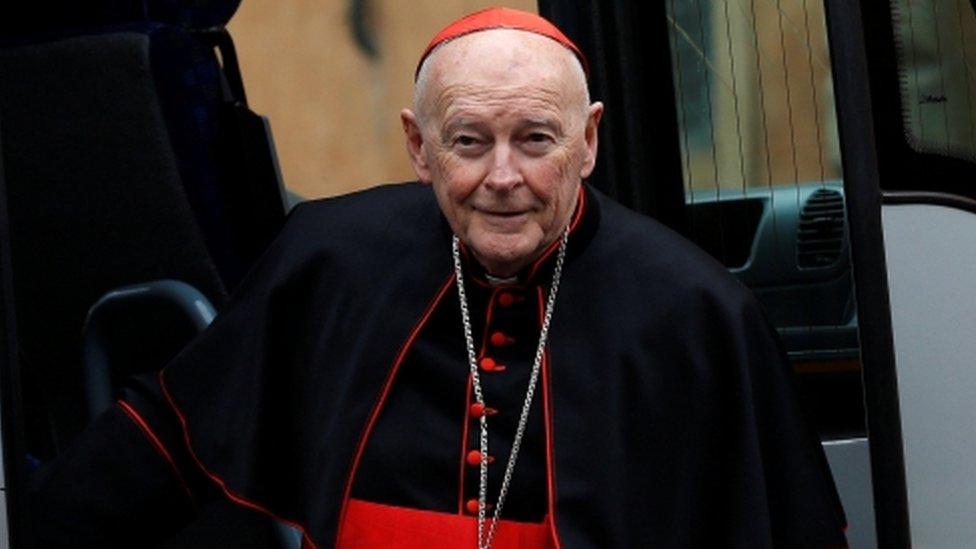 Cardinal Theodore Edgar McCarrick pictured in 2013