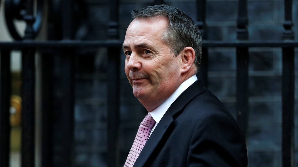 Liam Fox: Customs union 'would not deliver Brexit'