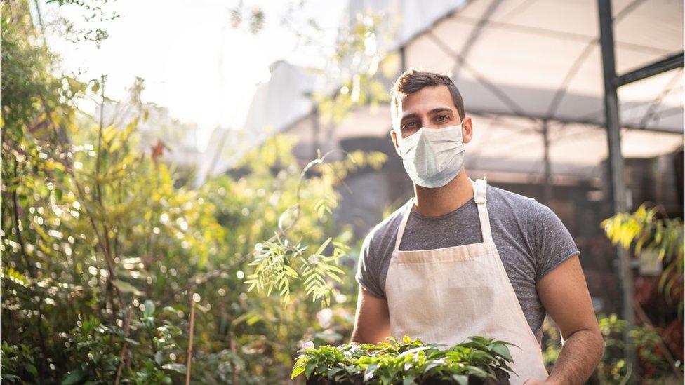 A garden centre worker