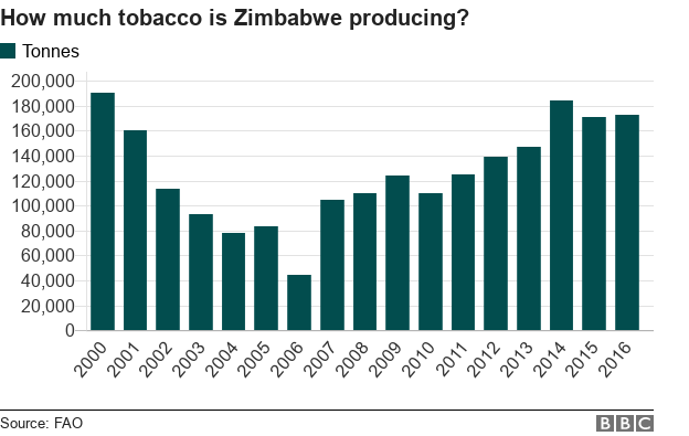 Graph showing tobacco production in tonnes between 2000 and 2016
