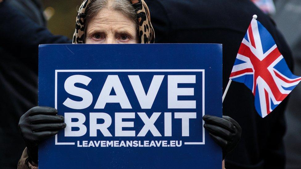 Partidaria del Brexit