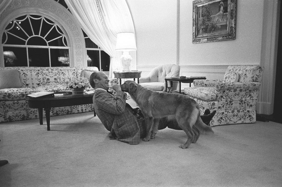 الرئيس جيرالد آر فورد يلعب مع حيوانه الأليف الذهبي، المسمى ليبرتي، في البيت الأبيض السكن التنفيذي في عام 1975.
