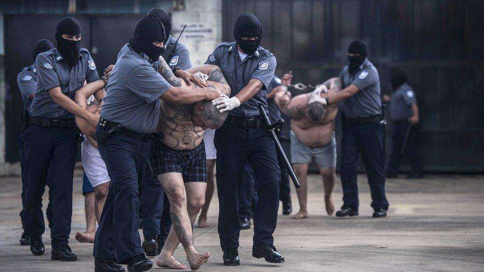 Integrantes de una pandilla atrapados por la policía.