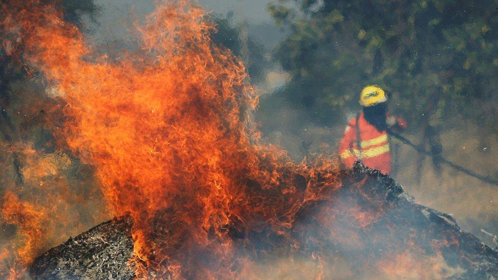 Llamas y bombero
