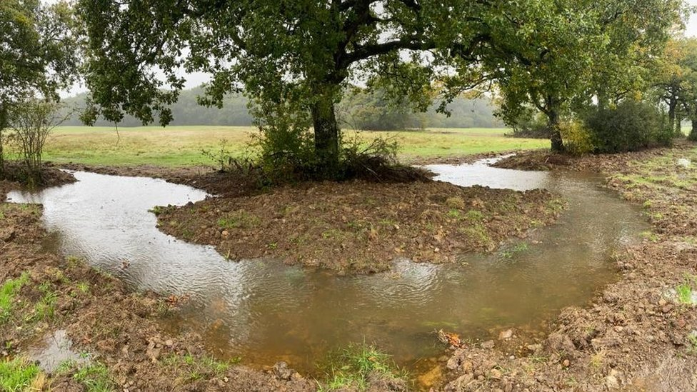 Re-meandering the River Frome at Canwood Farm