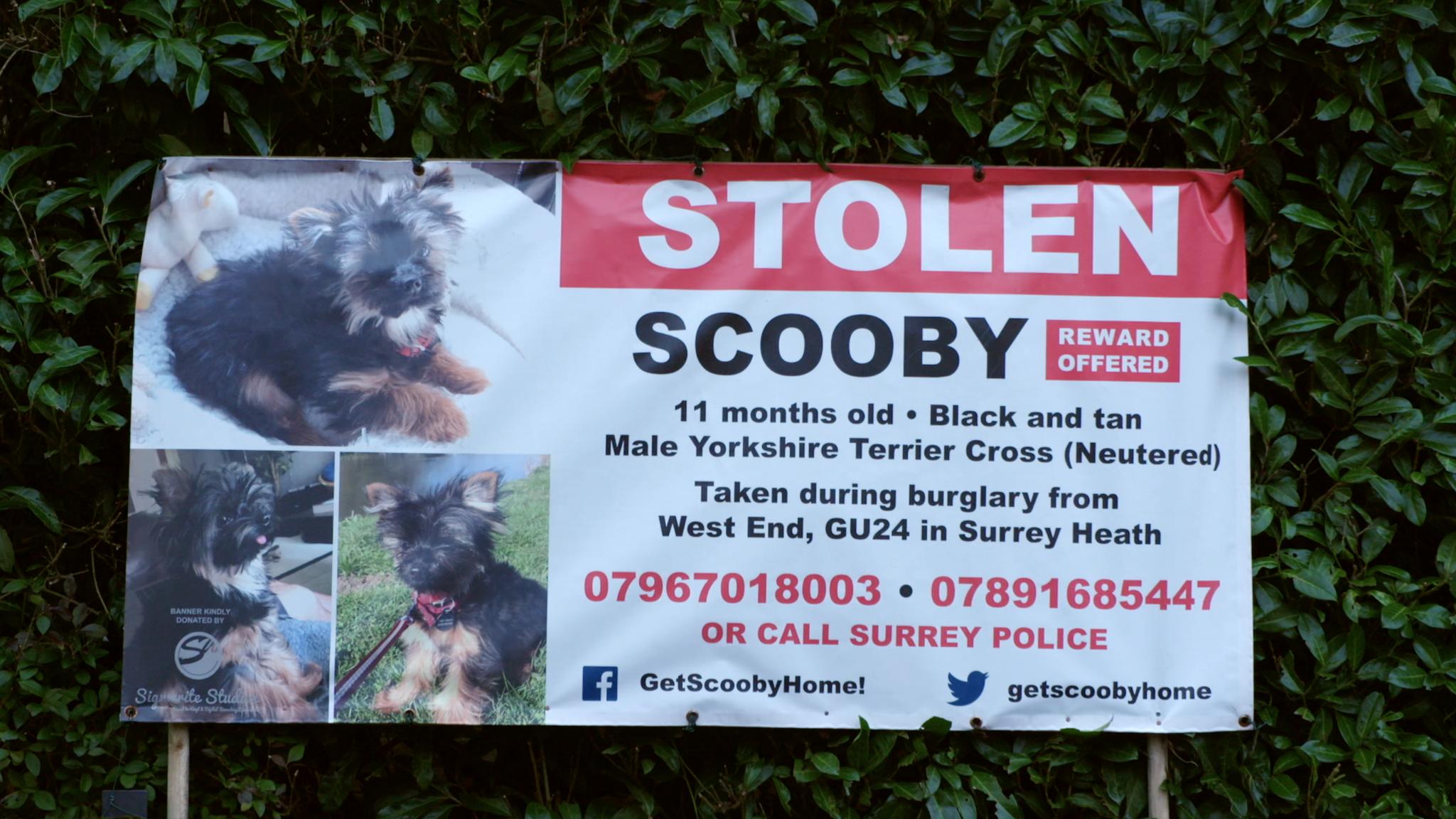 Stolen sign appealing for information