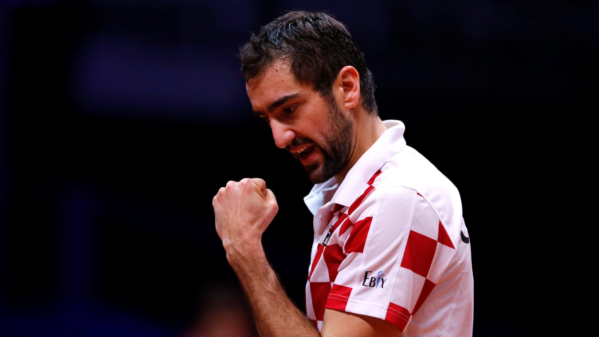 Davis Cup: Marin Cilic and Borna Coric put Croatia 2-0 up in final