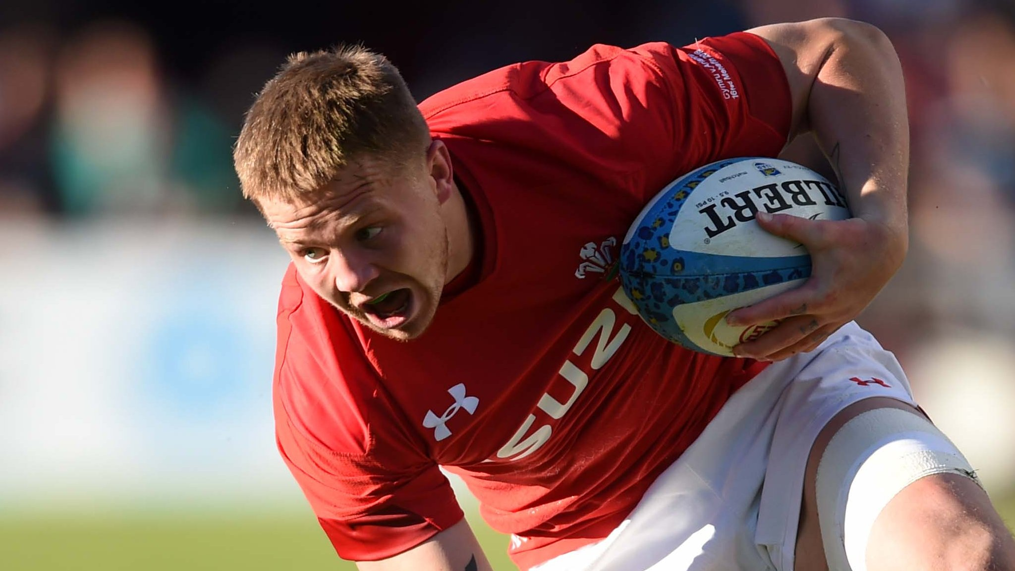 Wales flanker Davies ruled out of autumn internationals