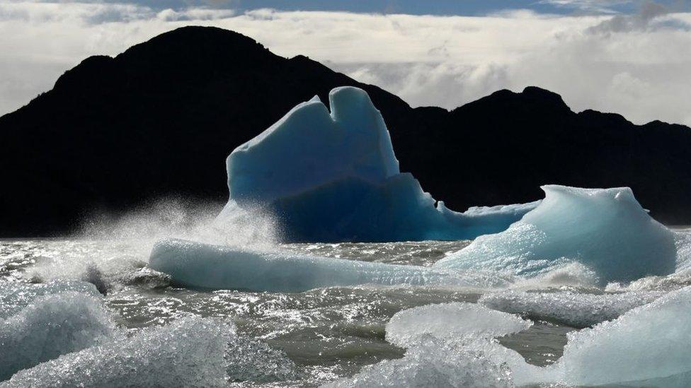 Témpanos de hielo en el agua