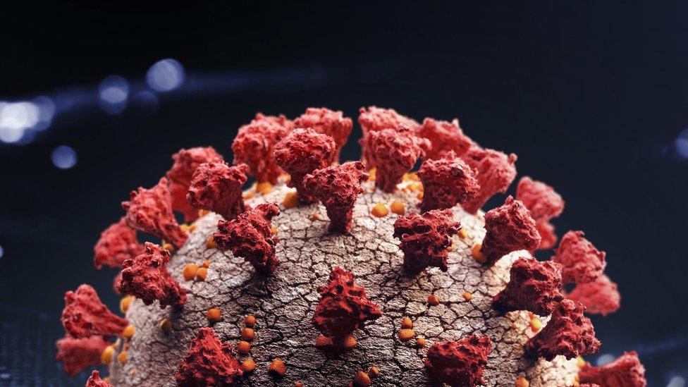 Covid-19, varian baru virus corona