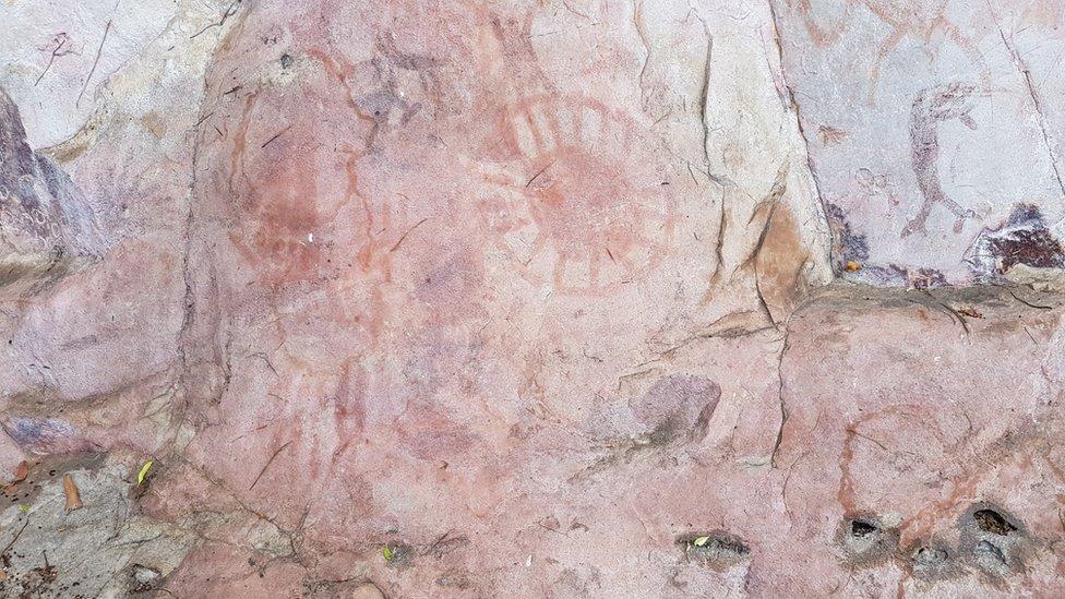 stene u amazoniji