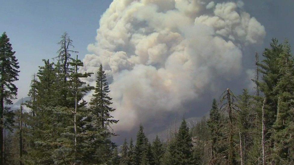 حريق كريك، كاليفورنيا