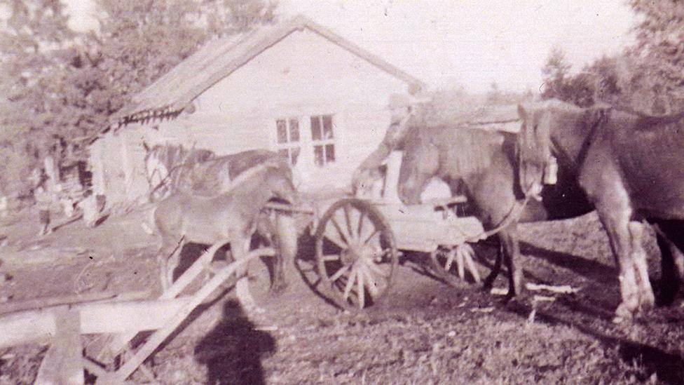 Imagen de la década de 1950 del lugar en Park Valley, Saskatchewan, donde vivieron los abuelos maternos de Jesse.