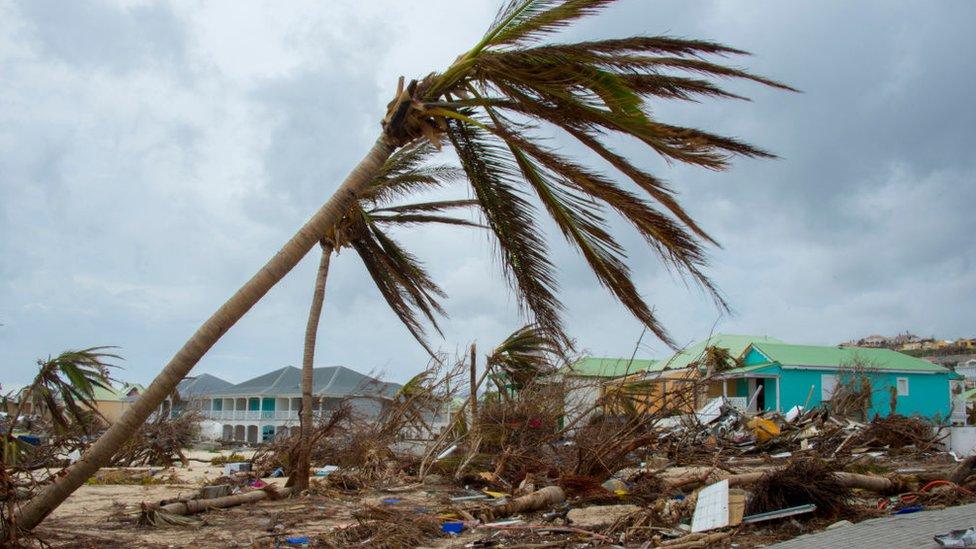 Чому кількість жертв урагану в Пуерто-Рико занизили у 50 разів?