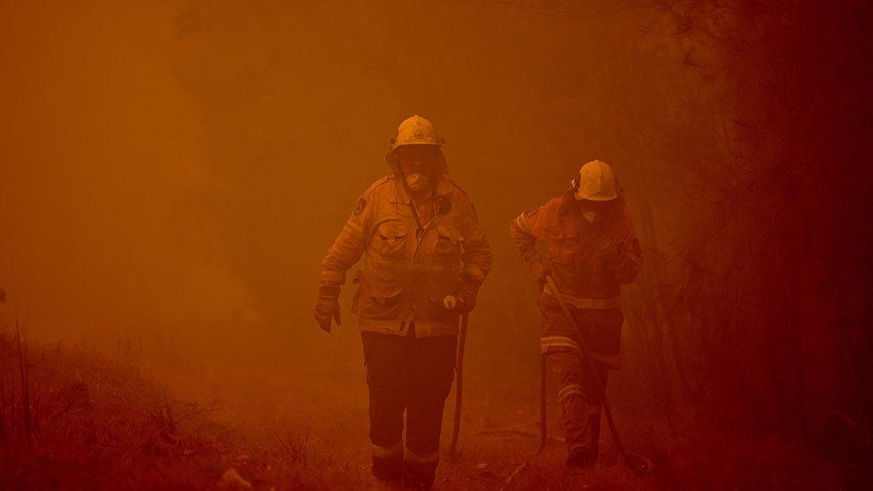 Bomberos combatiendo fuegos en Nueva Gales del Sur.