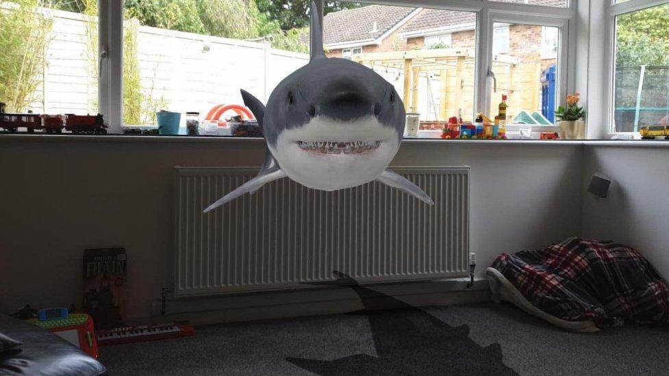 AR shark