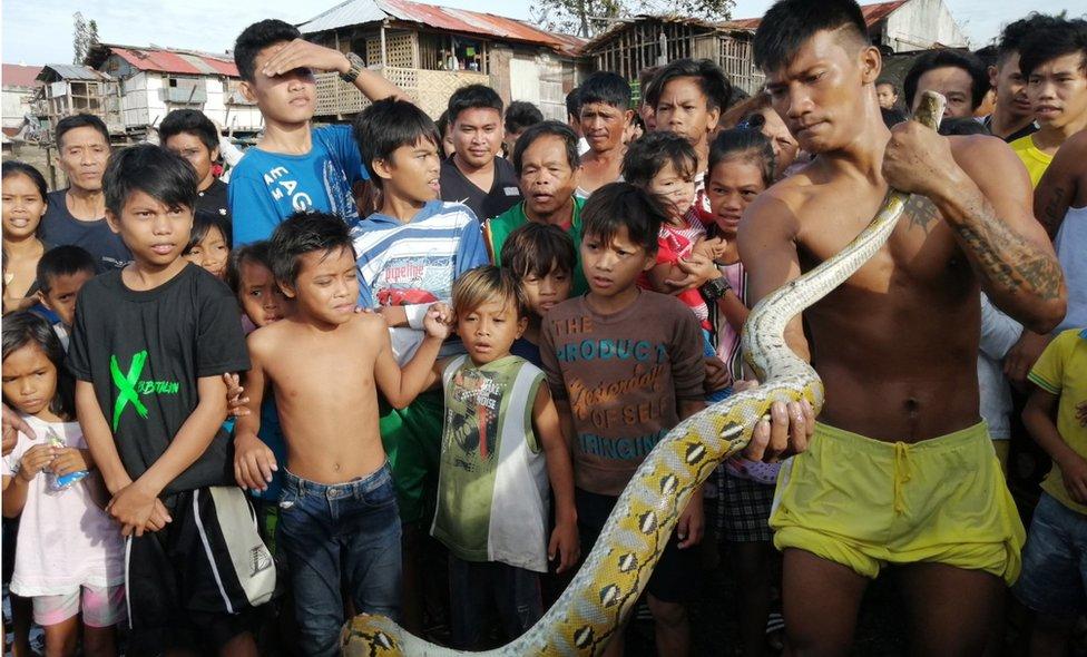 Residentes de Ormoc con una serpiente pitón.