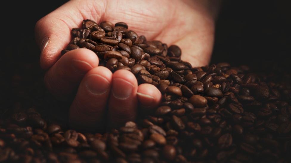 Mano con un puñado de granos de café