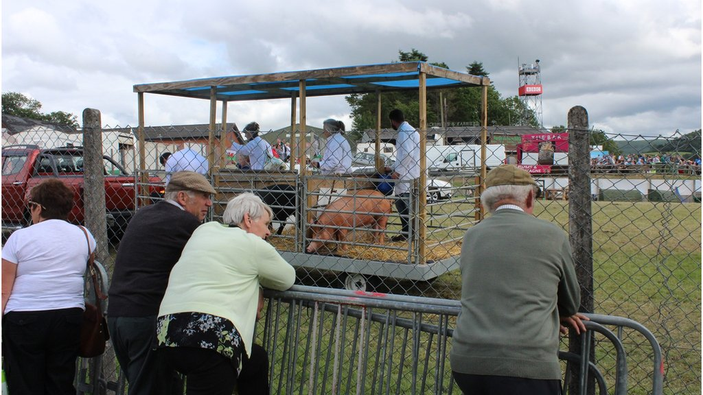 """Well i ni fynd adre cyn iddi hi fynd yn draed moch."" // Another successful Royal Welsh Show comes to an end"