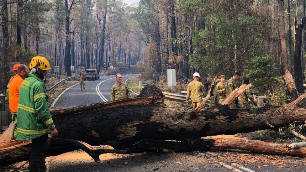 Vatrogasci čiste put u Viktoriji