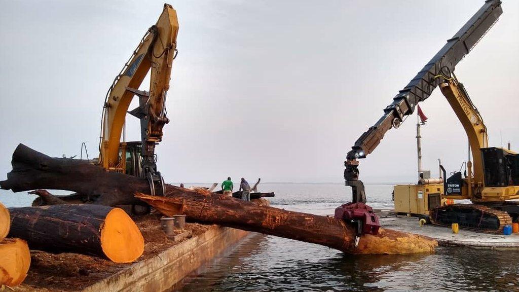 Kete Krachi tiene acceso a la madera de una concesión en el lago Volta que abarca 350.000 hectáreas.