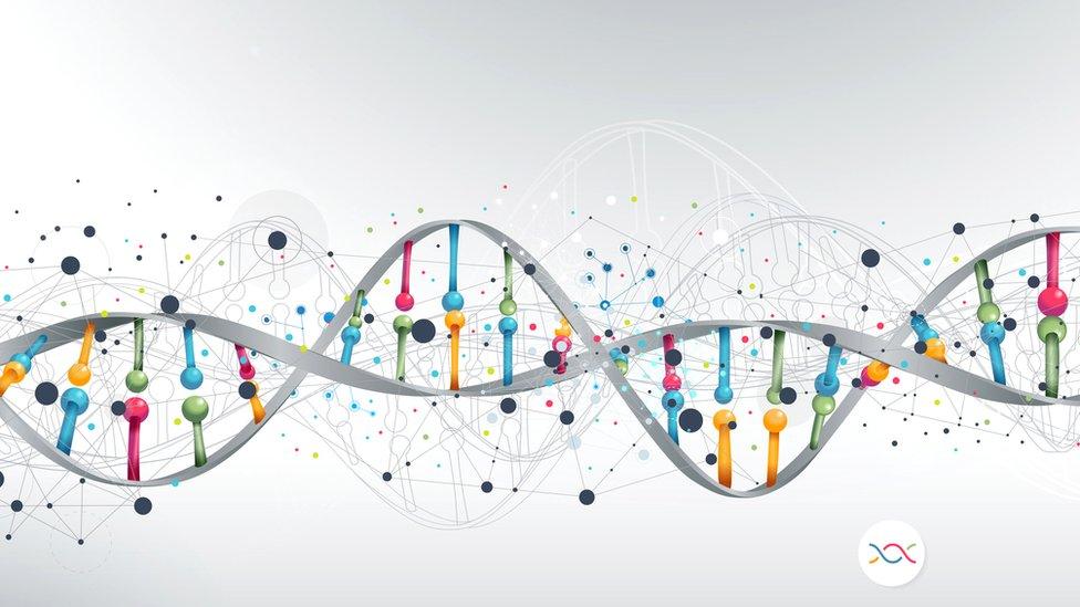 Representación del genoma humano.