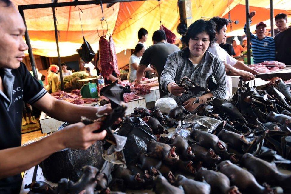 Venta de murciélagos en el mercado de Tomohon en el norte de Sulawesi, Indonesia, en febrero de 2017.