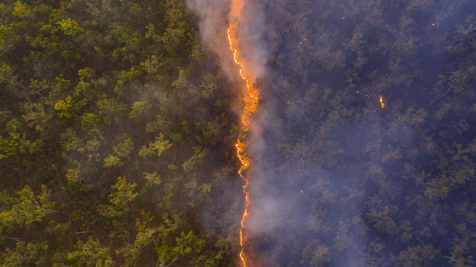A Line of Fire by Robert Irwin