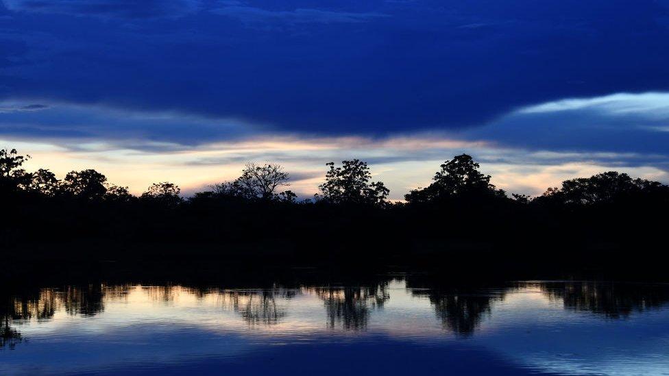 Fajar menyingsing di Amazon