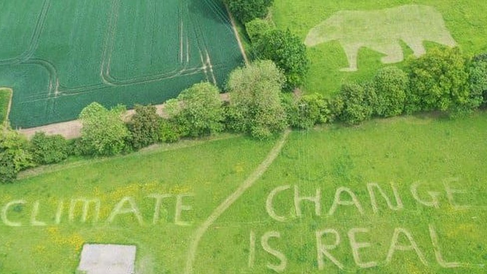 """A polar bear and message saying """"Climate change is real"""" mown into a lawn"""