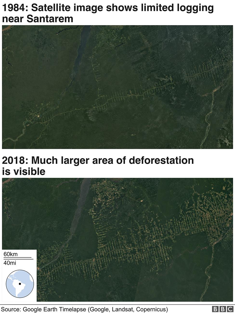 Satellite images of deforestation showing change since 1984