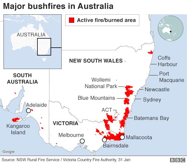 Map: Active fires, 31 Jan 2020