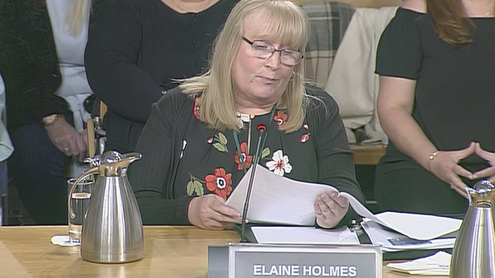 """Elaine Holmes said she was """"cynically used"""" by the review group"""