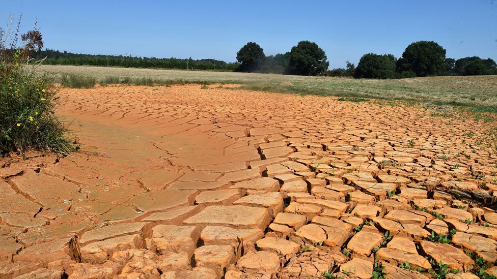 Lecho seco de un río en Francia durante una ola de calor en 2018
