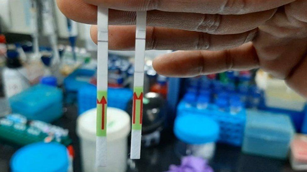 Laboratorio en India