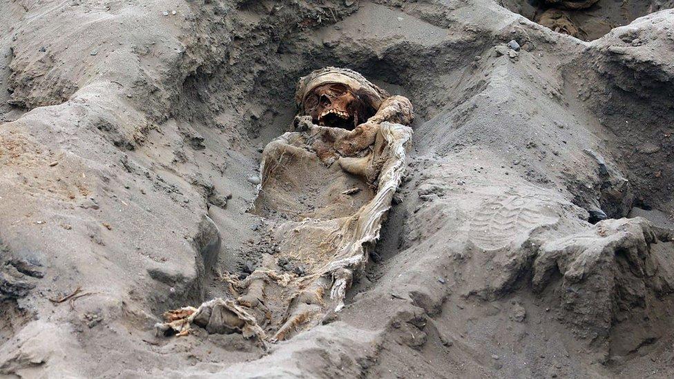 عثر العلماء على جثث 227 ضحية تتراوح أعمارهم بين 5 و 14 عاما