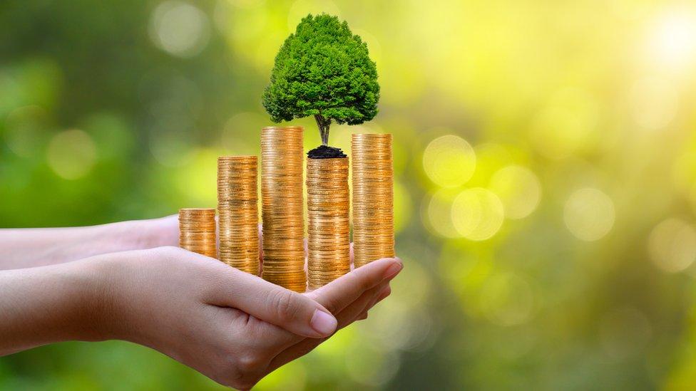 Se espera que con el cambio generacional se produzca un auge de las inversiones social y ambientalmente responsables.