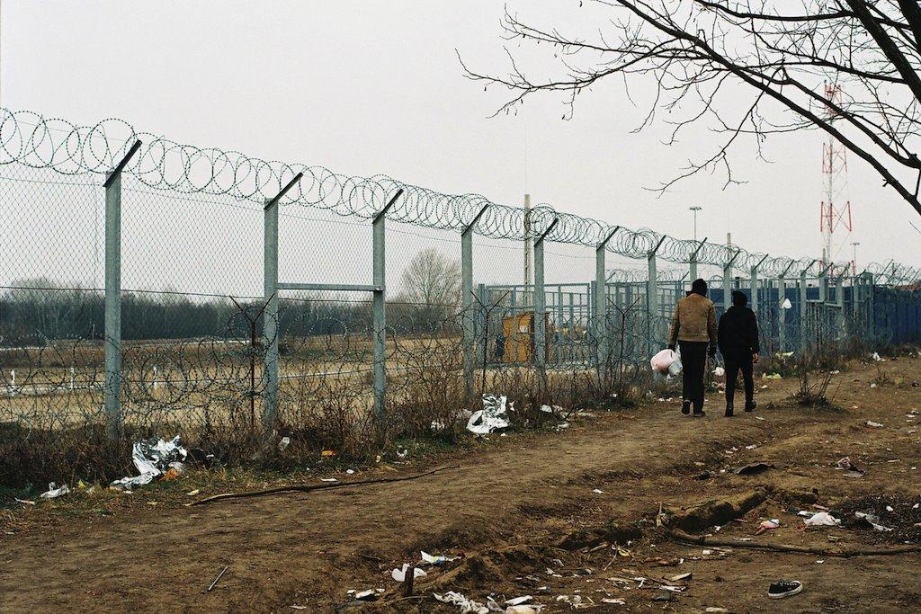 migranti na granici sa mađarskom