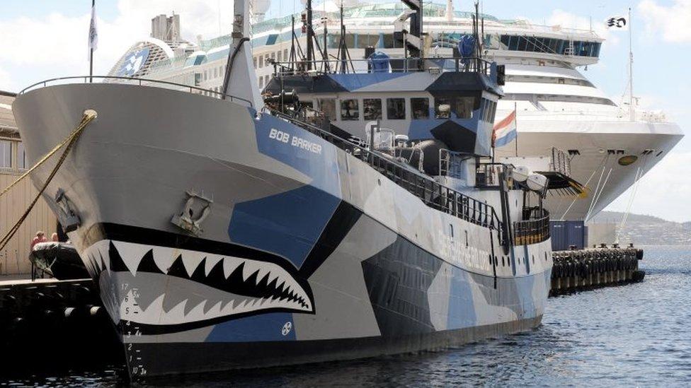 Sea Shepherd vessels Bob Barker anchored in Hobart, Tasmania