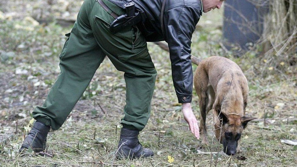 رجل شرطة وأحد الكلاب البوليسية