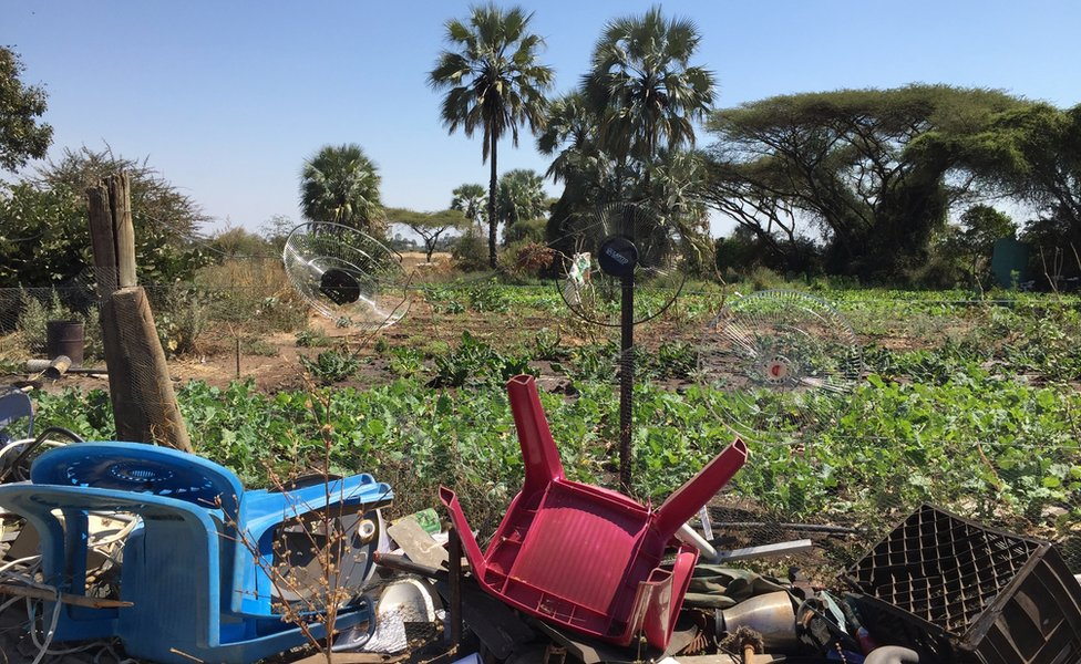 Plastic refuse is used to try and deter elephants from farmland