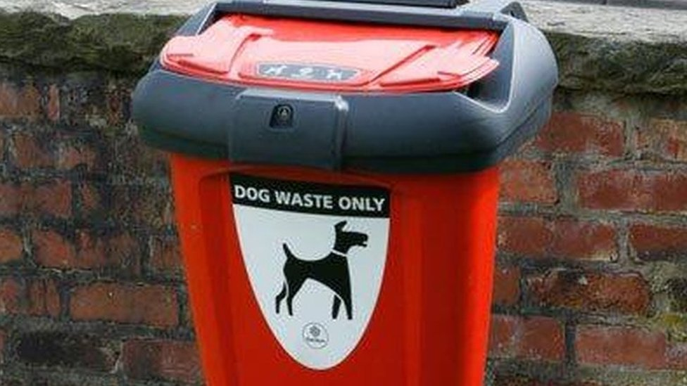 Thief steals Devon seaside resort dog poo bin